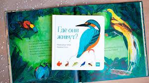 5 крутых книг для <b>маленьких почемучек</b> | Папамамам — МИФ