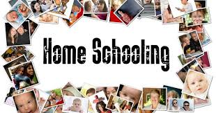i can write an essay about the pros and cons of homeschooling   my    i can write an essay about the pros and cons of homeschooling   my writing blog