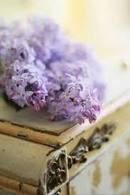 Пин от пользователя Alyona на доске Lilac & <b>Cream</b>-Beige ...