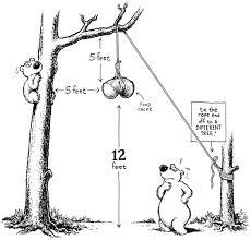 Ineffective & outdated: Six reasons to not <b>hang</b> a bear <b>bag</b>
