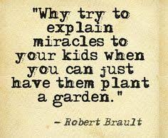 Gardening Quotes on Pinterest | Garden Quotes, Garden Signs and ... via Relatably.com