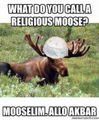 Moose Puns | Kappit via Relatably.com