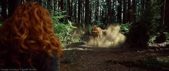 Image result for wolves leading the pack