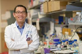 laser treatment boost effectiveness of brain tumor drugs uf david d tran m d ph d is chief of neuro