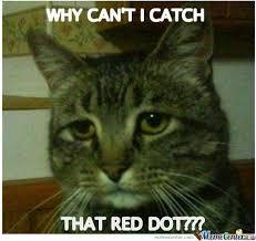 Depressed Cat by burnedbyhand - Meme Center via Relatably.com