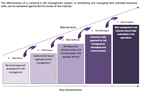 grant thornton risk management services click on the image to view risk maturity model