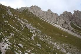 6170: Formazioni erbose calcicole alpine e subalpine