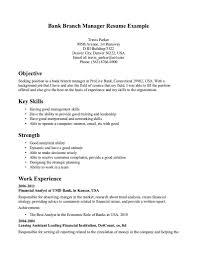 resume budget manager