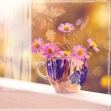 """Résultat de recherche d'images pour """"gifs de fleurs variées"""""""
