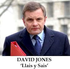 Image result for mp david jones