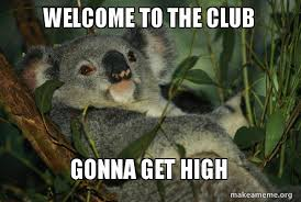 Welcome to the club Gonna get high - Laid Back Koala | Make a Meme via Relatably.com