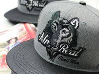 46 Best <b>caps</b>,hats,snapbacks,truckers images | Kšiltovka, Snapback ...