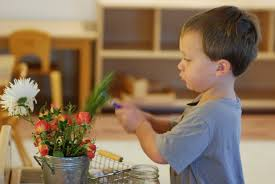 Image result for images of children in montessori