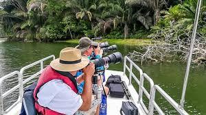 9 <b>North Panama</b>, Гамбоа: лучшие советы перед посещением