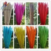 Wholesale Dyed <b>Pheasant Feathers</b> - Buy Cheap Dyed <b>Pheasant</b> ...