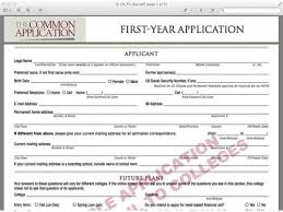 Common Application Essay Help Year Common Application Essay Help Reasons Transferring