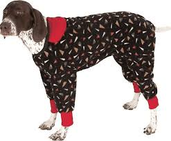 The Best Winter <b>Dog Clothes to</b> Keep Your Pet <b>Warm</b> | The Dog ...