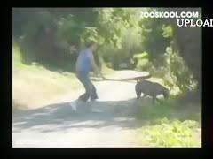 Most Relevant Videos - zoophilia latin - Zoofiliak9.com