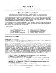 template pleasant view sample resume example buyer resume template template pleasant view sample resume example buyer resume objectivebuyer resume objective full size