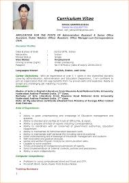 8 sample of curriculum vitae for job application pdf basic job job application pdf curriculumvitaesample1 png sample curriculum vitae university write business plan artist rebel