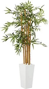 Bamboo - Artificial Trees / Artificial Plants & Flowers ... - Amazon.com