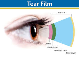 Image result for tear film layers
