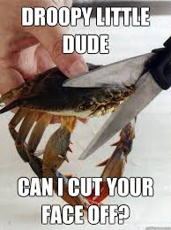 droopy little dude can i cut your face off? - Optimistic Crab ... via Relatably.com