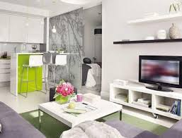 appealing studio apartment design with appealing home interiro modern living room