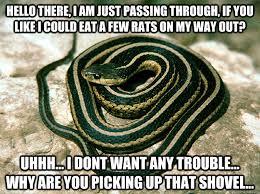 Misunderstood Snake memes | quickmeme via Relatably.com