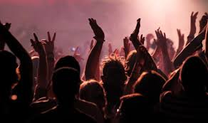 Image result for people at concert