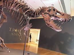 A <b>T</b>. <b>Rex</b> Sold for $31.8 Million, and Paleontologists Are Worried ...