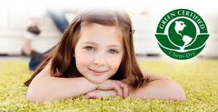 benefits of an eco friendly carpet cleaning company benefits eco friendly