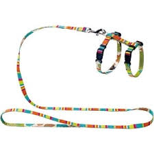 Шлейка Hunter Smart Harness with Leash Set Stripes нейлон ...