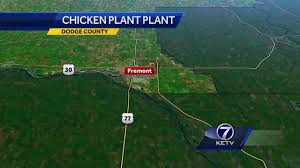 more ruffled feathers public weighs in on proposed fremont more ruffled feathers public weighs in on proposed fremont chicken plant