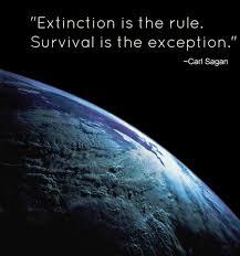 Image result for extinction