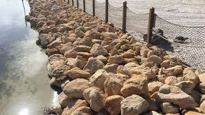 Image result for disney alligator barriers