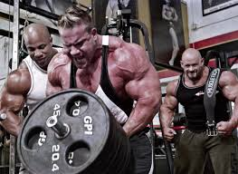 Image result for bodybuilder