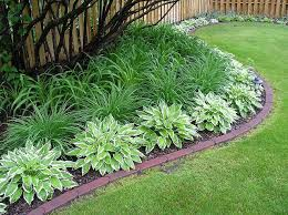 1000 ideas about low maintenance garden on pinterest flower seeds online gardening and ground covering plants bedroommagnificent lush landscaping ideas