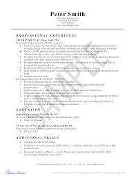 insurance clerk resume sample com mailroom clerk resume examples qualifying skills and talents create a fabulous resume docstoc