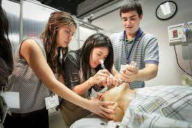 explore our summer medical programs for high school students explore our summer medical programs for high school students national student leadership conference