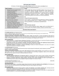 resume samples elite resume writing it resume sample 1 provided by elite resume writing services