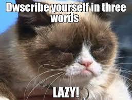 Dwscribe yourself in three words LAZY! - Grumpy cat | Meme Generator via Relatably.com
