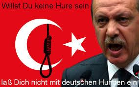 Bildergebnis für türke