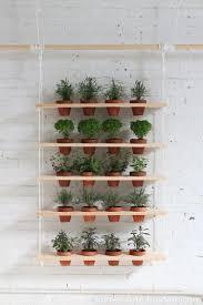 Kitchen Windowsill Herb Garden 65 Inspiring Diy Herb Gardens Shelterness