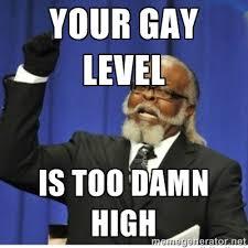 YOUR GAY LEVEL IS TOO DAMN HIGH - too damn high guy | Meme Generator via Relatably.com