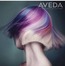 Image result for aveda hair color images