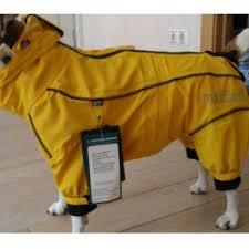 Отзыв о <b>Дождевик для собаки Rukka</b>   самая лучшая одежда для ...