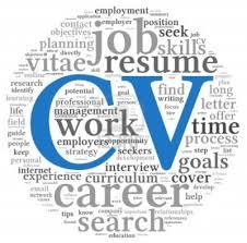Free Executive Resume Builder   Resume Maker  Create professional     Executive Resume Service