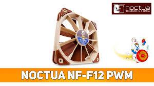 Обзор <b>вентилятора Noctua NF</b>-<b>F12</b> PWM с технологией Focused ...