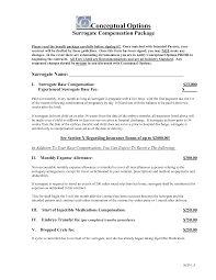 Best Photos of Templates For Compensation Packages - Employee ... Sample Compensation and Benefits Package